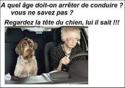 Dans quel pays trouve-t-on la plus vieille ou le plus vieux conducteur du monde ?