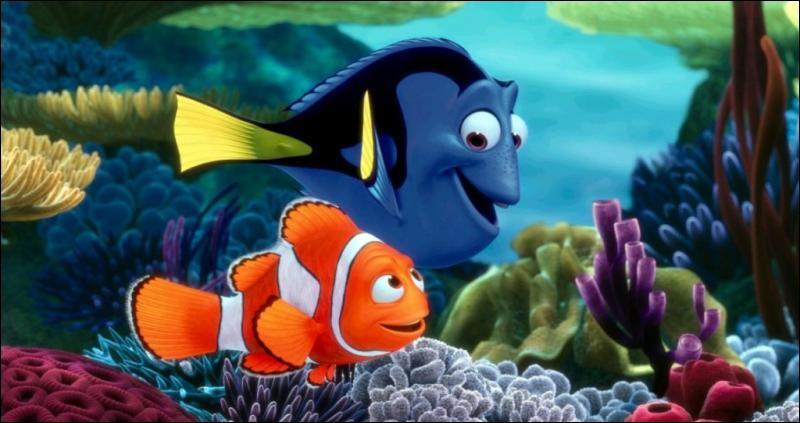Le monde des mers est très dangereux. Enfin, c'est ce que dit Marin. C'est pourquoi, il surprotège son fils. Lorsque ce dernier se fera enlever par des pêcheurs, il traversera le monde pour le retrouver.