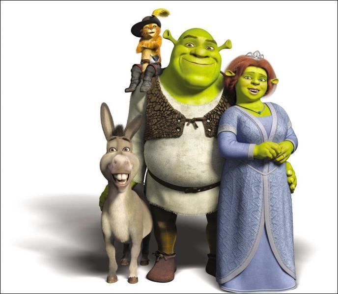 Un ogre vert et sale vit dans un marais. Il est engagé pour retrouver une belle princesse au lourd secret.