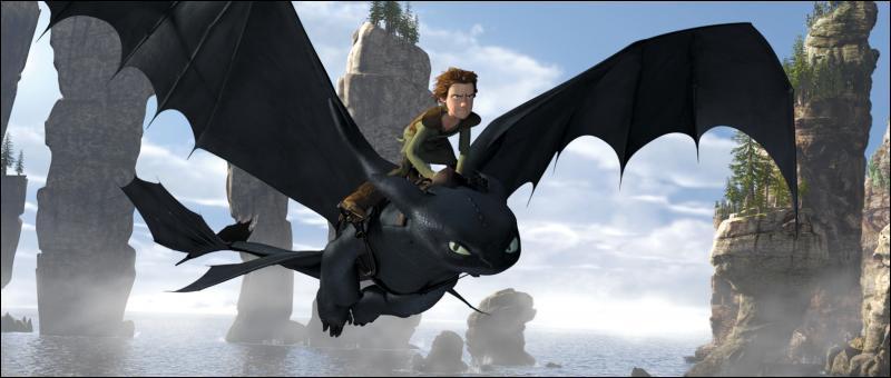 Dans un monde de Vikings costauds et barbares, Harold fait un peu tache. Il n'est ni fort ni violent et, là où la coutume veut que les Vikings tuent des dragons, lui devient ami avec eux.