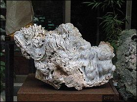 Cette roche contient des cristallites de quartz. Ce n'est pas un minéral, qu'est-ce ?