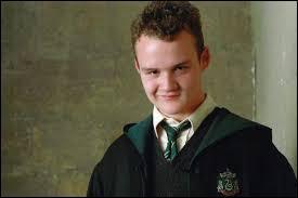 Quelle couleur prend le polynectar qu'Harry boit quand il y ajoute les cheveux de Goyle ? (Tome 2)