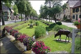 Nous nous promenons dans les rues de Hirtzbach. Commune alsacienne en plein cœur du Sundgau, elle se situe dans le département ...