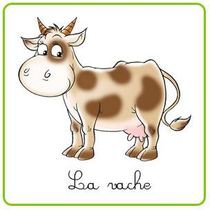 Questions vaches !