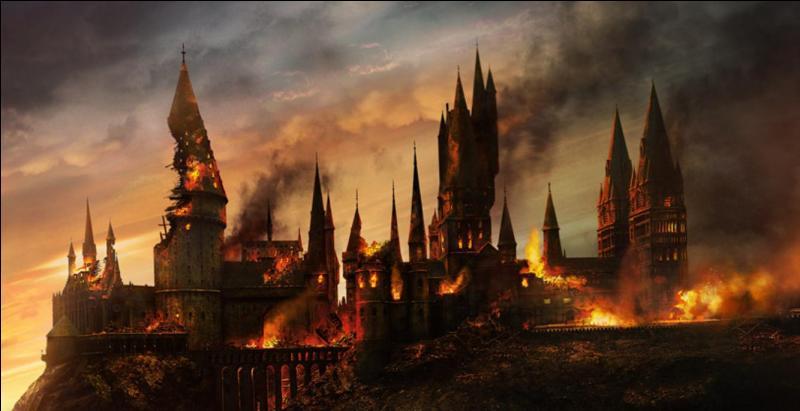 Severus Rogue savait aussi se battre. L'art du combat était un exercice qu'il maîtrisait aussi de manière remarquable. Dans la saga cinématographique, à combien de batailles a-t-il participé ?