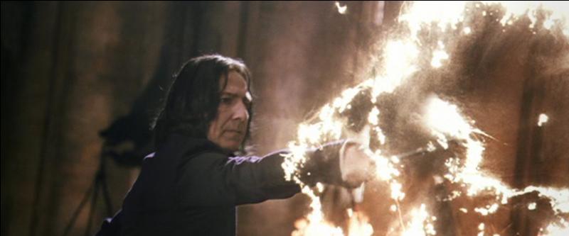 Severus Rogue entre à l'école de magie de Poudlard à sa onzième année, soit en 1971. Placé dans la maison Serpentard, il ne s'entend pas du tout avec le clan des Maraudeurs. Vers quelle matière montre-t-il des dispositions dès son entrée à Poudlard ?