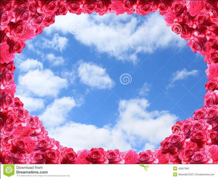 """Qui a écrit """"On se retrouve à l'abri sous un ciel aussi joli que des milliers de roses"""" ?"""