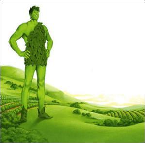 """Que produit la marque d'agro-alimentaire """"Géant Vert"""" ?"""