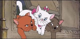 Qui sont ces trois chatons de gauche à droite ?