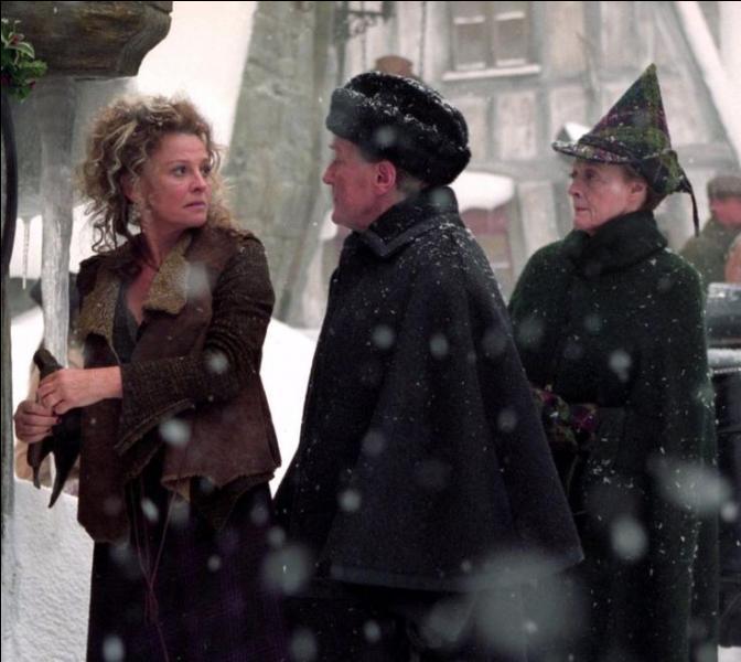 """Madame Rosmerta. Tenancière de l'auberge dénommé """"Les Trois Balais"""", Madame Rosmerta est placée sous le sortilège de l'Impérium par Drago Malefoy. Quel professeur aime particulièrement le fréquenter ?"""