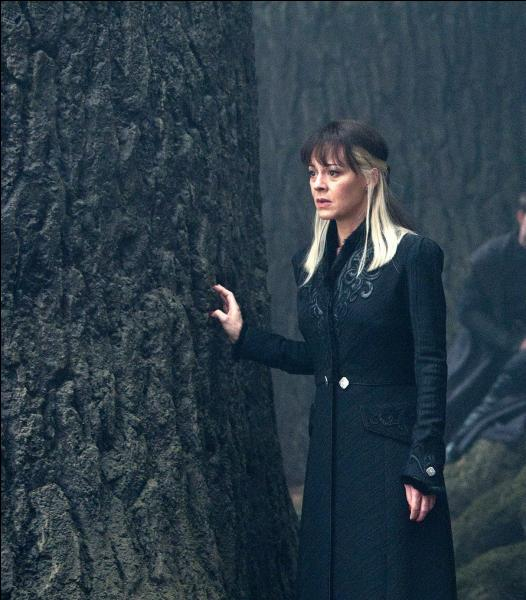"""Narcissa Malefoy. Épouse de Lucius Malefoy et mère de Drago Malefoy, elle se désolidarise assez vite de l'idéologie voulue par le Seigneur des Ténèbres. Elle finit même par aider Harry Potter à la fin de la saga, dans """"Harry Potter et les Reliques de la Mort"""" (Partie II). Comment ?"""