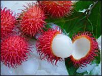 """Le ramboutan est un fruit exotique originaire d'Asie. Ramboutan vient du mot """"rambut"""". Que signifie ce mot ?"""