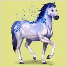 Ce cheval est de race :