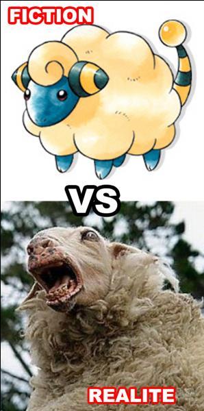 Les moutons sont-ils en général plus mignons en Pokémon ou dans la réalité ?