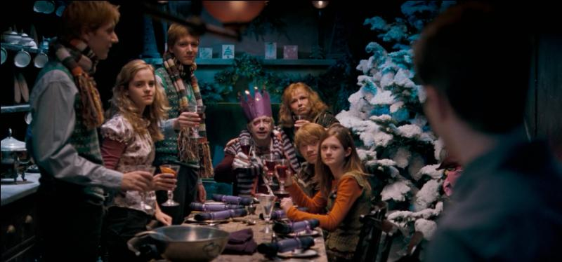 """La cuisine du 12, Square Grimmaurd apparaît très peu dans la saga cinématographique. On la voit le mieux dans """"Harry Potter et l'Ordre du Phénix"""". Mais à combien de reprises la voit-on dans le cinquième film ?"""