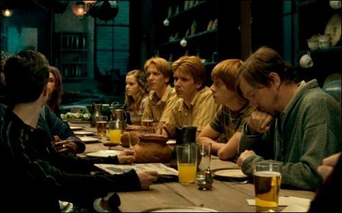 Au deuxième étage du 12, Square Grimmaurd figure un deuxième dortoir avec le portrait de Phineas Nigellus Black. Il est passé à la postérité dans les livres pour une réplique à propos d'Albus Dumbledore. Quelle est-elle ?