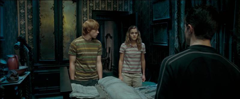 La demeure est devenue propriétaire de la mère de Sirius Black, Walburga Black, au milieu du XXème siècle. Connue pour son côté très caractériel selon son fils Sirius Black, quel est le sujet qu'elle ne voulait surtout pas aborder ?