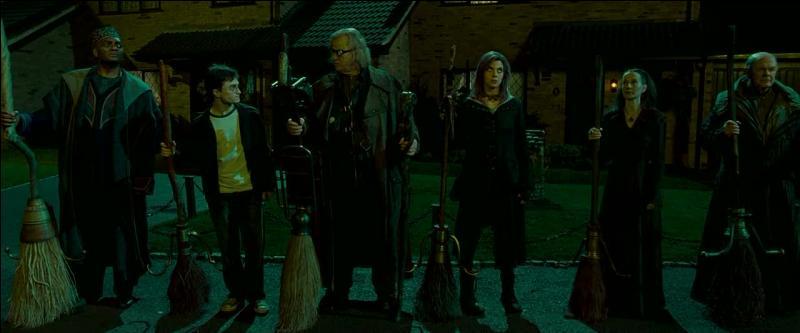 """Enfin, le 12, Square Grimmaurd apparaît donc pour la première fois dans """"Harry Potter et l'Ordre du Phénix"""". Les membres de l'Ordre du Phénix viennent chercher Harry Potter au 4, Privet Drive à Little Whinging dans le comté du Surrey alors qu'il vient d'être renvoyé de Poudlard pour mauvais usage de la magie. Lors du vol en balai les amenant au quartier général, quel fleuve survolent-t-ils ?"""