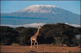 Ci-contre, une vue magnifique du Kilimandjaro. Comment s'appelle la capitale du pays où se situe cette montagne ?