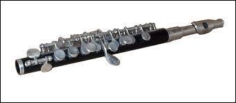 Comment appelle-t-on cet instrument ?