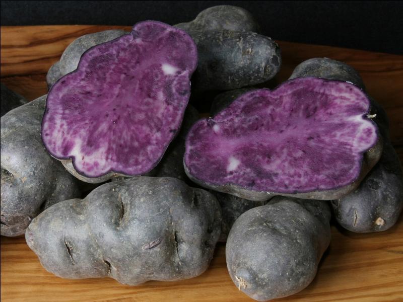 Comment s'appelle cette pomme de terre à la chair violette ?