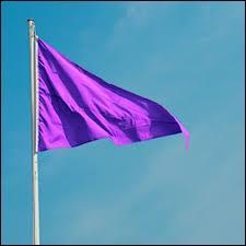 Que signifie le drapeau violet qui est parfois hissé sur les plages ?