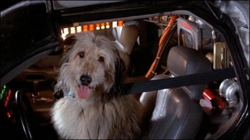 Donnez-moi le titre de ce film, où Einstein est le premier chien à voyager dans le temps ?
