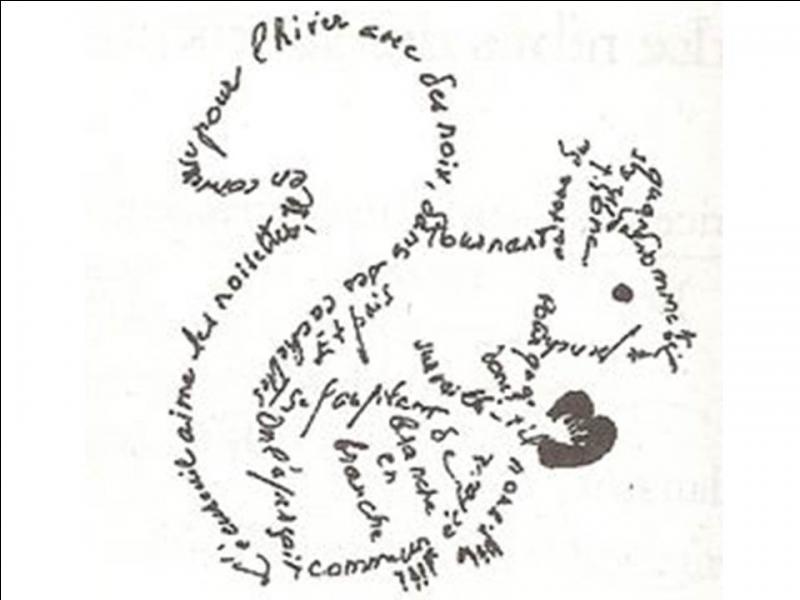 """Complétez cette phrase du calligramme en image : """"L'écureuil aime..."""""""
