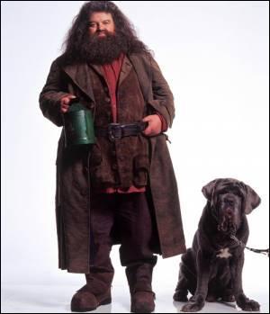 Dans Harry Potter, comment s'appelle le chien d'Hagrid ?