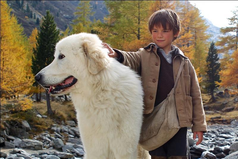 Dans ce film de Nicolas Vernier, quel est le nom de la chienne de Sébastien ?