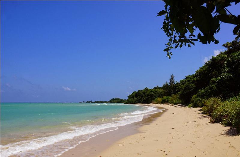 Cette île du golfe du Bengale, faisant partie des îles Andaman, a tout ce qu'il faut pour passer des vacances de rêve, immenses plages, flots bleus, sable blanc, elle est pourtant considérée comme l'île la plus dangereuse du monde !