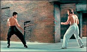 De quel film est tiré ce combat ?