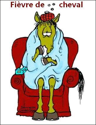 Le voilà avec une fièvre de cheval ! Quelle maladie a-t-il pu attraper ?