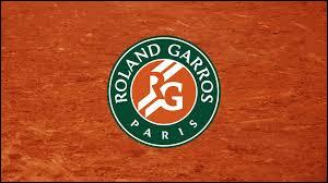 En 2015, qui a empêché Djokovic de remporter Roland-Garros, le seul tournoi du Grand Chelem qui lui manque ?