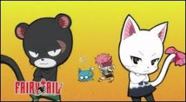 Comment s'appelle le chat noir ?