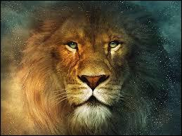 Comment se nomme le fameux lion ?