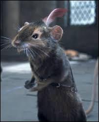 """Comment s'appelle la petite souris, un des personnages principaux de """"Narnia"""" ?"""