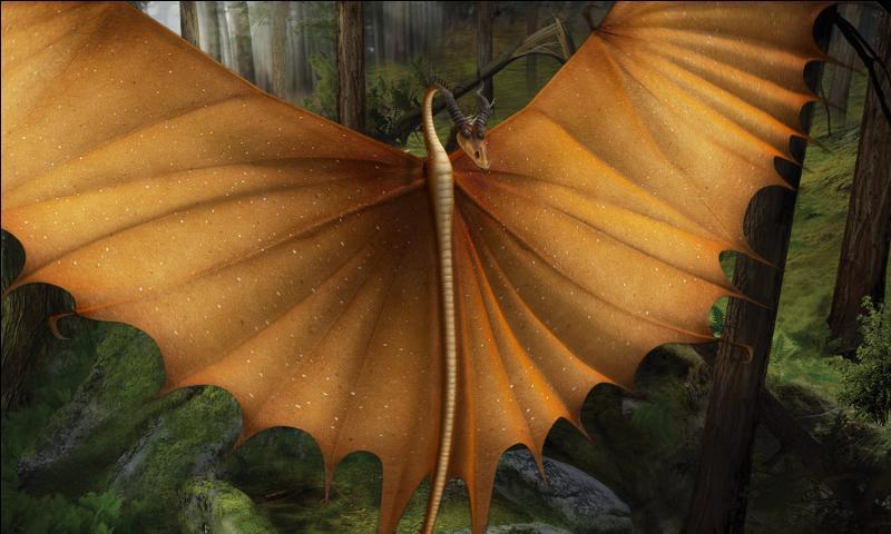 Selon le Manuel, quel dragon, semblable au Typhonmrang, a les ailes tranchantes ?