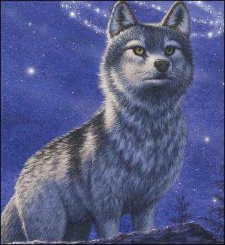 Le Royaume des loups (romans)