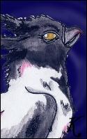 Dans les légendes, quelle hagsmonne est la sorcière ?
