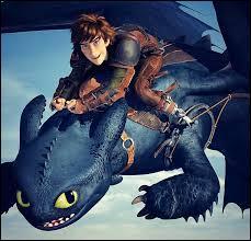 Lors de la course de dragons, quelle est la couleur thème de l'équipe d'Harold et de Krokmou ?