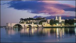 Neuf papes se succédèrent dans cette ville de 1309 à 1423. Elle fut annexée à la France, en tant que capitale du Comtat Venaissin, en 1791.