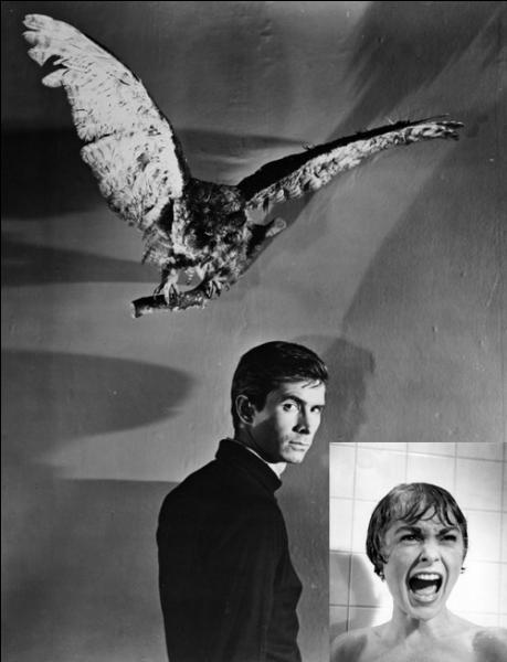Film de 1960 : Marion Crane vient de s'enfuir après avoir volé 40 000 dollars. Elle trouve refuge dans un motel isolé. Hélas pour elle, la voilà aux prises avec le gérant de l'hôtel, Norman Bates, habité par l'esprit d'une mère possessive.