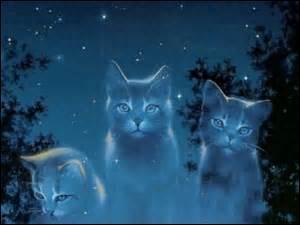 Quels chats vont au clan des Etoiles après leur mort ?