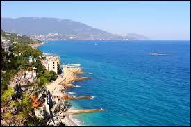 Quand la journée internationale pour la protection internationale de la mer Noire se déroule-t-elle ?