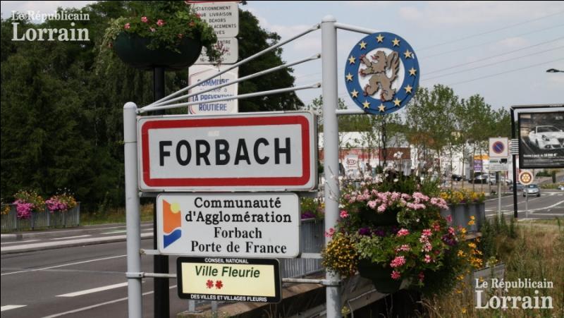 """Le mot allemand """"bach"""" signifiant ......... est un élément qu'on retrouve souvent dans les toponymes d'Alsace et de Moselle :"""