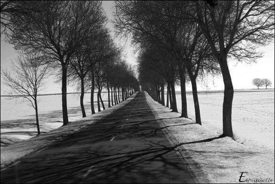Quelle ancienne route nationale française était la plus longue ?