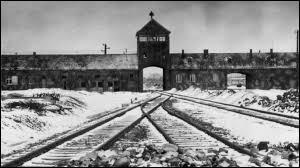 À combien estime-t-on le nombre de juifs qui moururent suite aux actions de l'Allemagne nazie et ses alliés durant la Deuxième Guerre mondiale ?