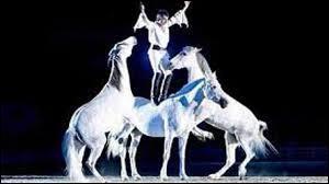Une troupe de spectacle équestre porte le nom d'un cheval. Comment s'appelle-t-elle ?