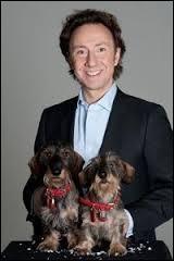 De quelle race sont les deux chiens de Stéphane Bern ?